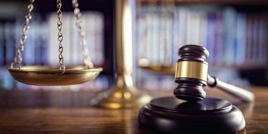 Dopady nálezu Ústavního soudu